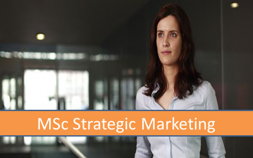 msc strategic marketing assignment