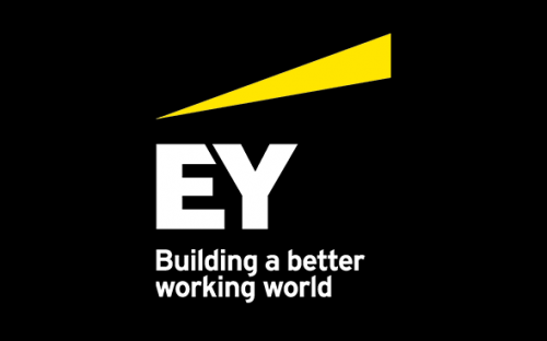 Analytics/ Business Intelligence Specialist at Ernst & Young (EY)