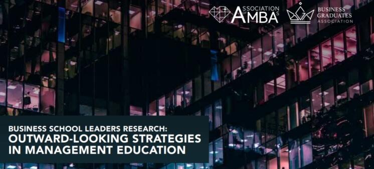 AMBA report