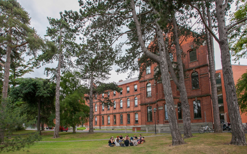 Students on the Smurfit MBA are taught to lead diverse teams anywhere in the world