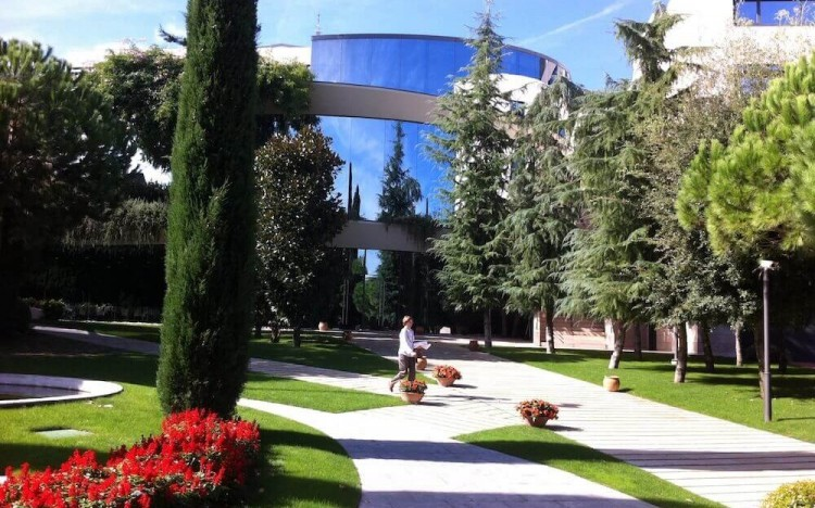 Spain's IESE Business School tops best provider of custom programs