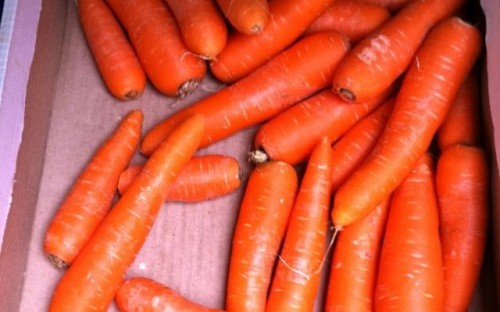 Hey Scandinavians, carrots are good for you